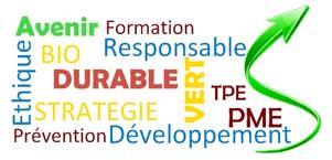 Responsabilité sociétale, Développement durable, ISO26000