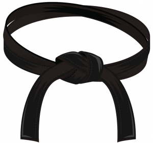 Black belt, Formation Lean Six Sigma, Lean Six Sigma training, Formation LSS, LSS training