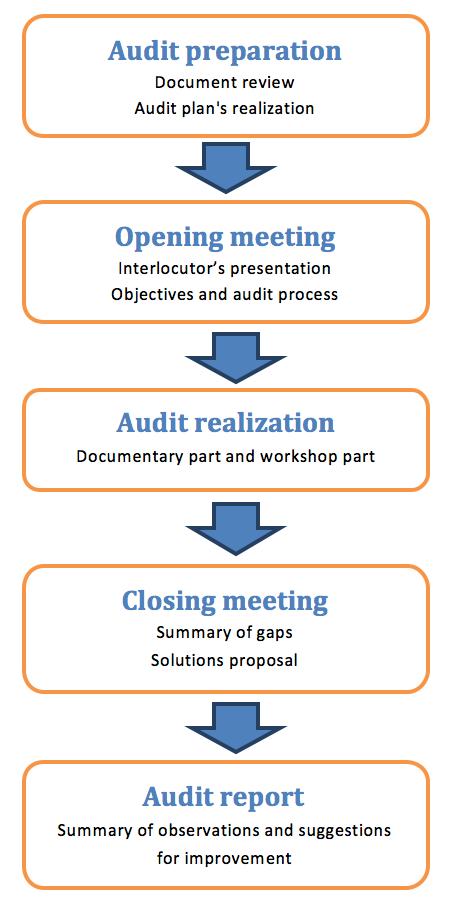 Audit, Internal audit, Mock audit, ISO, Certification, Diagnosis